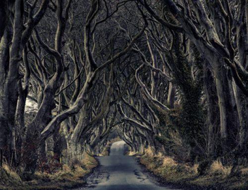 How Has Game of Thrones Influenced Irish Tourism?